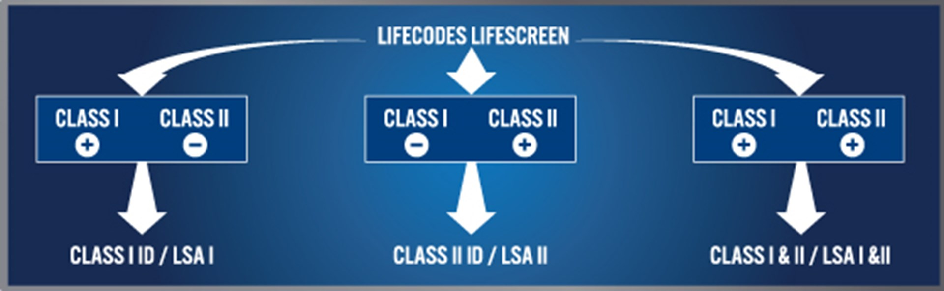 Lifecodes Screen Identification About 1